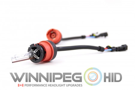 TRS Straight AMP D2S Adapters